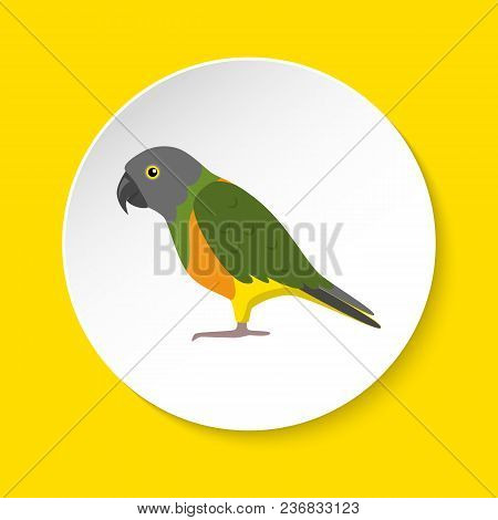 Senegal Parrot Icon In Flat Style On Round Button. Exotic Tropical Bird Symbol Isolated.