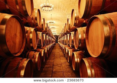 Wine cellar with barrels