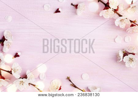 Blooming Spring Flowers On Pink Wooden Background With Copy Space