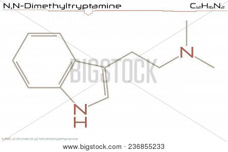 Large And Detailed Infographic Of The Molecule Of Dimethyltryptamine.