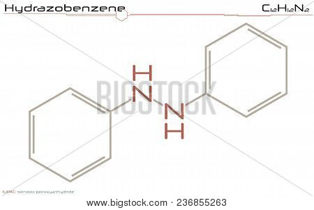 Large And Detailed Infographic Of The Molecule Of Hydrazobenzene.