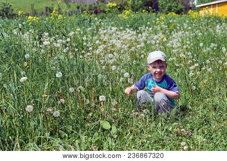 A Small A Boy Sits In The Grass, Looks At Us And Smiles. There Are A Lot Of Blooming White Dandelion