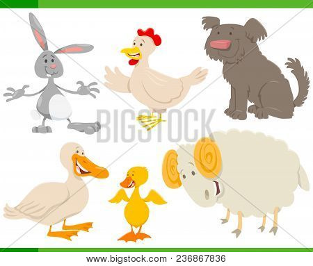 Cartoon Farm Animal Characters Set
