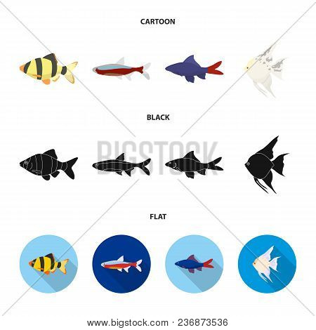Angelfish, Common, Barbus, Neon.fish Set Collection Icons In Cartoon, Black, Flat Style Vector Symbo