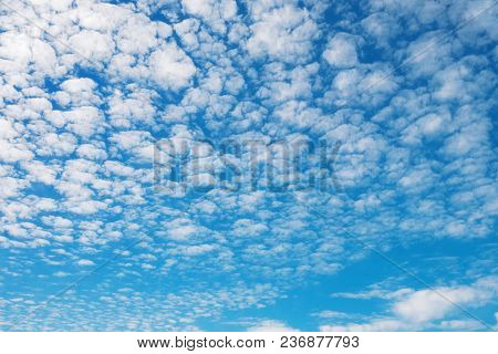 Deep Blue Sky Wit Small White Clouds