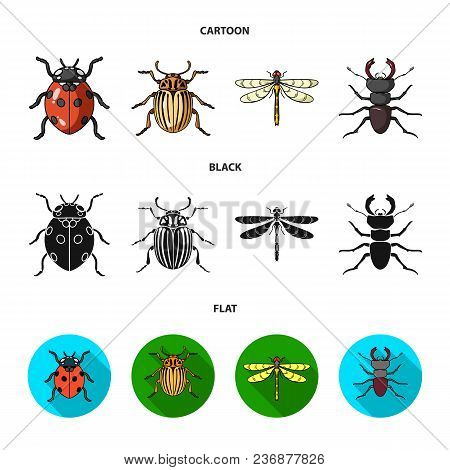 Insect, Bug, Beetle, Paw .insects Set Collection Icons In Cartoon, Black, Flat Style Vector Symbol S