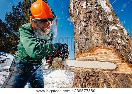 Close-up Of Woodcutter Lumberjack Is Man Sawmill Saws Tree.