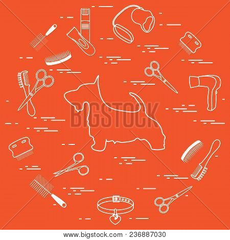 Scotch Terrier Silhouette, Combs, Collar, Leash, Razor, Hair Dryer, Scissors Arranged In A Circle. H