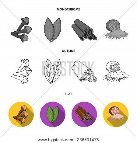 Ginger, Rosemary, Vanilla, Mint.herbs And Spices Set Collection Icons In Flat, Outline, Monochrome S