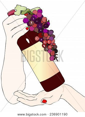 A Bottle Of Good Red Wine