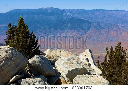 Rugged Rocky Terrain With Scattered Alpine Pine Trees Overlooking The Desert Taken At Mt San Jacinto