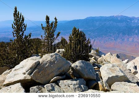 Rugged Rocky Terrain With Alpine Pine Trees Overlooking Mountains And Valleys Taken On Mt San Jacint