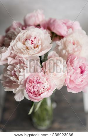 Cute And Lovely Peony. Many Layered Petals. Bunch Pale Pink Peonies Flowers Light Gray Background. W