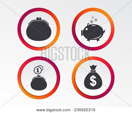 Wallet With Cash Coin And Piggy Bank Moneybox Symbols. Dollar Usd Currency Sign. Infographic Design