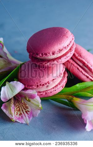 Pink French Macaroon Cookies With Pink Alstroemeria Flowers On A Concrete Background With Copy Space