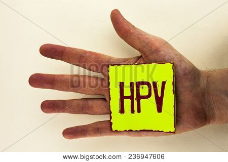 Word Writing Text Hpv. Business Concept For Human Papillomavirus Infection Sexually Transmitted Dise