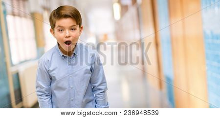 Handsome toddler child with green eyes scared in shock, expressing panic and fear at school corridor