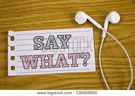 Text Sign Showing Say What Question. Conceptual Photo Repeat The Thing You Said Attonishment Surpris