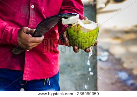 Seller Cutting A Raw Coconut Shell With Sickle To Take Out Coconut Water. Coconut Water Pouring Out