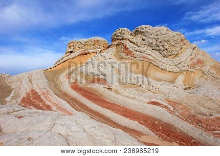 Butterfly, A Rock Formation At White Pocket, Coyote Buttes South Cbs, Paria Canyon Vermillion Cliffs