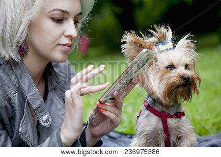 Social Media Addiction. Young Beautiful Woman With A Dog Holding A Smartphone Outdoors (psychologica