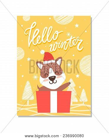 Hello Winter, Poster That Represents Cute Puppy Sitting In A Box That Is A Present For Someone On Ch