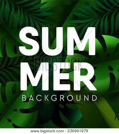 Tropical Palm Leaf Summer Background. Vector Green Exotic Tropic Plants Backdrop Design Of Tropical