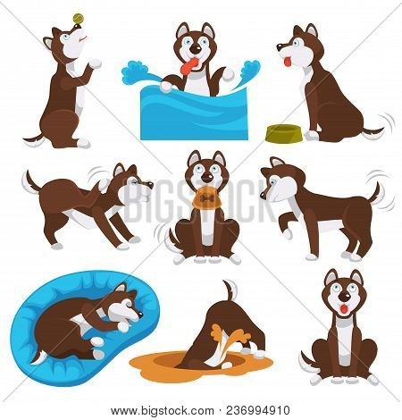 Husky Dog Pet Playing. Vector Cartoon Character Of Husky Dog Puppy Swimming, Playing Or Digging Bone