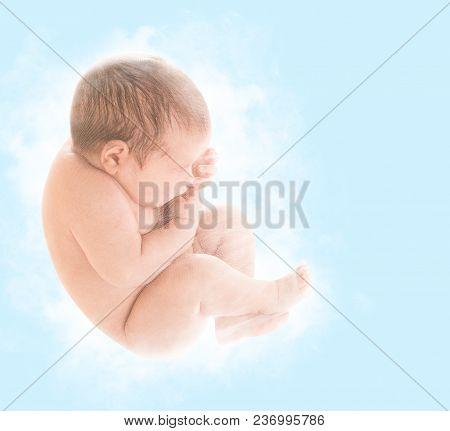 Newborn Baby Fetus, New Born Child Sleep In Embryo Pose, Unborn Kid Over Blue Background, Children B