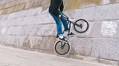 BMX rider does a wall ride around a curved wall. BMX freestyle. Stunts on BMX bike. The BMX rider rides along a curve wall. poster