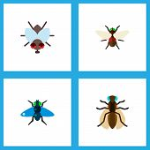 Icon flat buzz set of bluebottle, dung, fly and other vector objects. Also includes fly, bluebottle, dung elements. poster