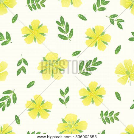 Medicinal Herbs Collection. Vector Seamless Pattern With A Plant Tribulus Terrestris On A White Back