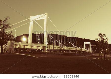 Elizabeth Bridge, Budapest In Gold