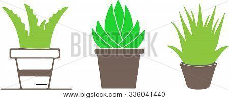 Aloe Vera Icon On White Background Ornamental, Plant, Poinsettia