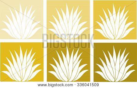 Aloe Vera Icon On White Background Poinsettia, Propagation