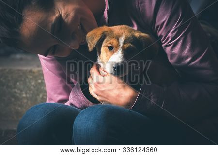 Woman Hugging Dog Puppy. Woman Hugging Her Pet Puppy Dog. Close Up Of Little Puppy Dog. Small Dog Pe