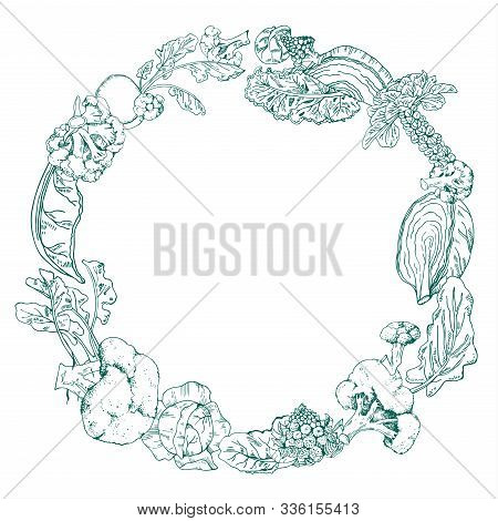 Round Frame With Different Cabbage. Hand Drawn Outline Vector Sketch Illustration On White Backgroun