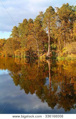 Orange And Yellow Autumn Trees Under Blue Sky With Reflection In Calm Lake Water Surface, Low Angle