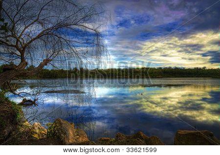 Yanchep National Park WA