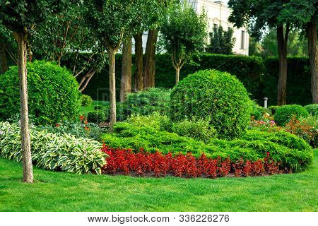 Landscaping Of Flower Beds With Flowers And Green Bushes With Trees In The Summer Garden, A Lot Of D