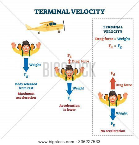 Terminal Velocity Vector Illustration. Labeled Falling Speed Explanation. Mathematical Skydiving For