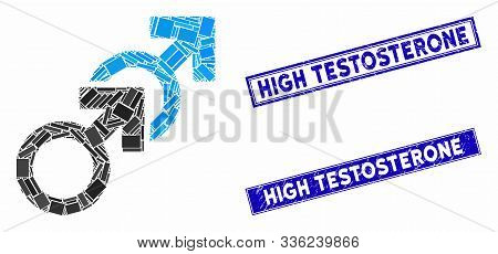 Mosaic Gay Sex Icon And Rectangular High Testosterone Watermarks. Flat Vector Gay Sex Mosaic Icon Of