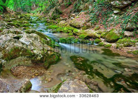 A Small Mountain Stream