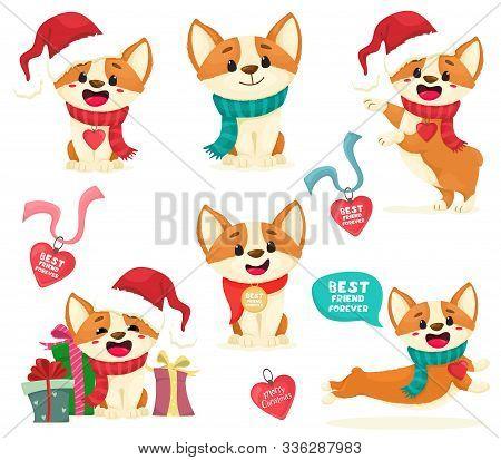 Puppies Corgi Set. Christmas Corgi Puppies With Medallions, Gifts. Cute Puppy Isolates In Cartoon Fl