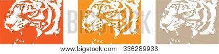 Tiger Vector On Color Background Wild Life, Wildcat, Wildlife, Zoo