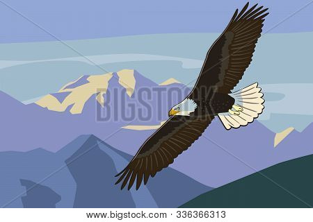 Eagle Soars In The Wild Mountains. Vector Drawing