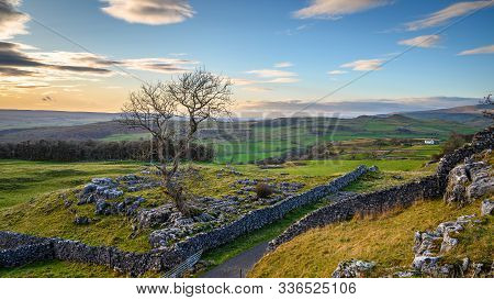 Elevated View Of Single Tree At Winskill Stones, Which Is A Nature Reserve Above The Village Of Lang