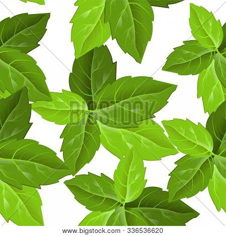 Forest Foliage. Print Design. Beautiful Abstract Pattern With Green Leaves On White Background. Gree