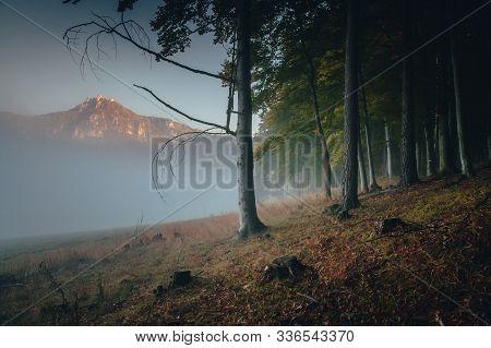 Sulov Rocks In Autumn Mist, Beautiful Nature Scenery