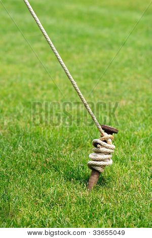 Tent Stake Wrapped With Rope
